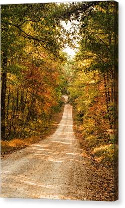 Fall Into Autumn Canvas Print by Mary Timman