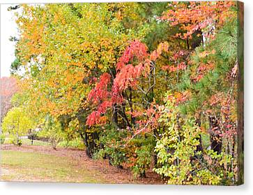 Fall Landscape 3 Canvas Print by Lanjee Chee