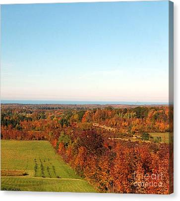 Fall Landscape Canvas Print by Kathleen Struckle