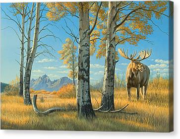 Fall Landscape - Moose Canvas Print by Paul Krapf