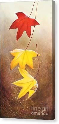 Fall Leaves 2 Canvas Print by Teresa Wadman