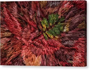 Fall Leaves  Canvas Print by John Farnan