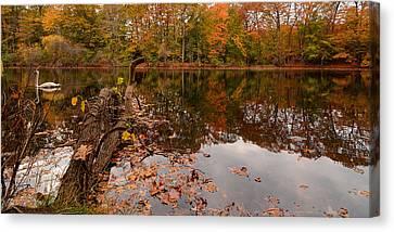 Fall Memories Canvas Print by Lourry Legarde