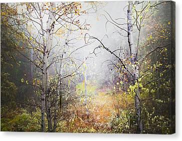Fall Mist Canvas Print by Theresa Tahara