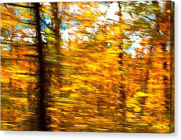 Fall Motion Canvas Print