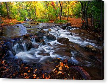 Canvas Print featuring the photograph Fall On Fountain Creek by Ronda Kimbrow