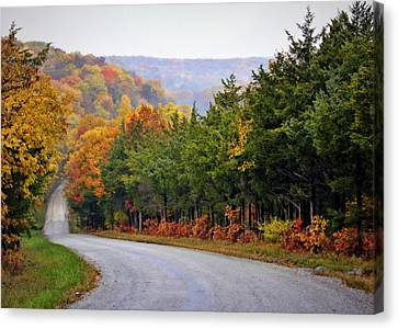 Fall On Fox Hollow Road Canvas Print
