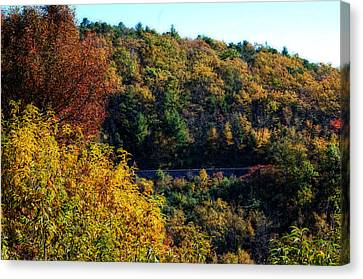 Canvas Print featuring the photograph Fall On The Blue Ridge Parkway by Cathy Shiflett