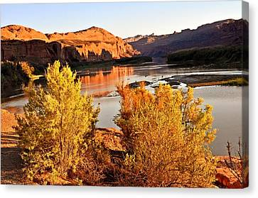 Fall On The Colorado Canvas Print by Marty Koch