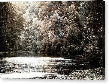 Fall On The Current Canvas Print by Marty Koch