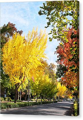 Fall On The Esplanade  Canvas Print