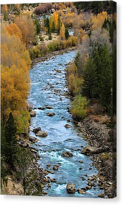 Fall On The Gros Ventre River Canvas Print