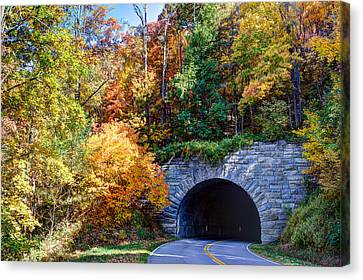 Fall On The Parkway Canvas Print by Walt  Baker