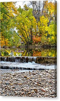 Fall On The Poudre Canvas Print by Baywest Imaging