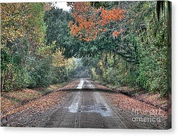 Fall On Witsell Rd. Canvas Print by Scott Hansen