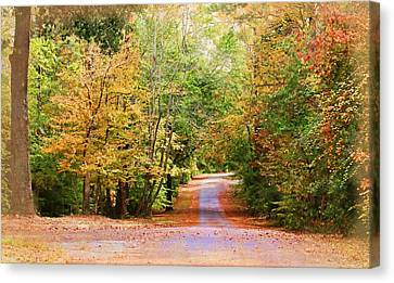 Canvas Print featuring the photograph Fall Pathway by Judy Vincent