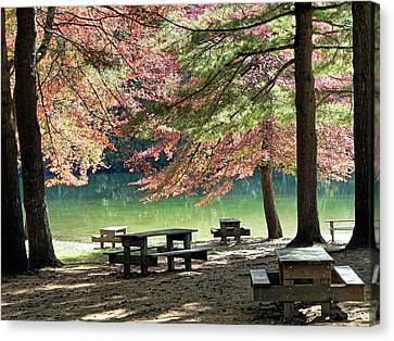 Canvas Print featuring the photograph Fall Picnic by Janice Drew
