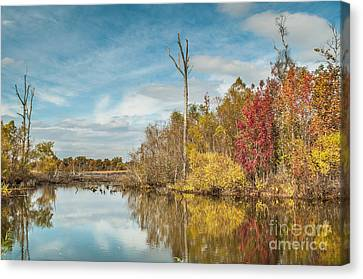 Canvas Print featuring the photograph Fall Pond by Debbie Green