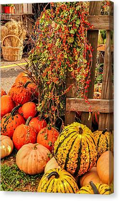 Fall Produce Canvas Print by Gene Sherrill