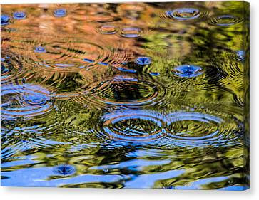 Fall Reflection 1 Canvas Print
