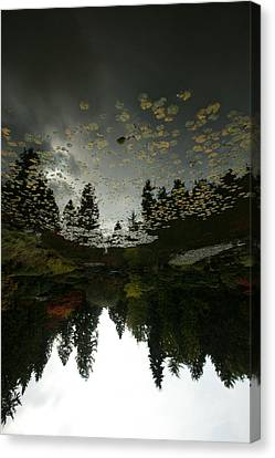 Fall Reflection Canvas Print by Jeff Burgess