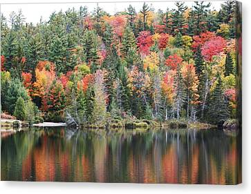 Canvas Print featuring the photograph Fall Reflection by Paula Brown