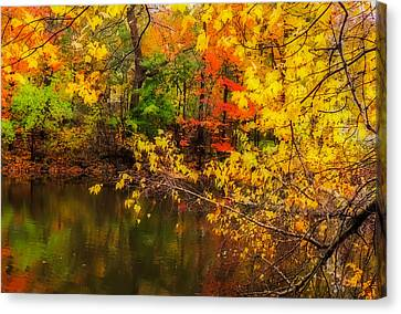 Fall Reflection Canvas Print by Robert Mitchell