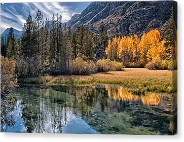 River Canvas Print - Fall Reflections by Cat Connor