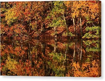 Fall Reflections Canvas Print by Karol Livote