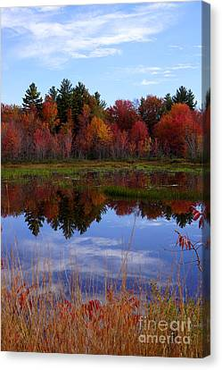 Fall Reflections Canvas Print by Kerri Mortenson