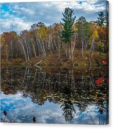 Fall Reflections Canvas Print by Paul Freidlund