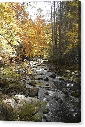 Fall River Scene Damascus Va Canvas Print
