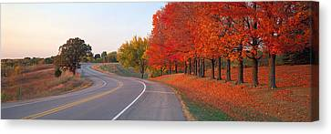 Fall Road Il Canvas Print by Panoramic Images