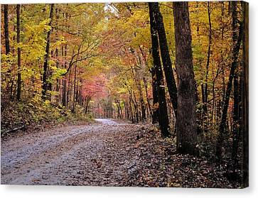 Fall Road Canvas Print by Marty Koch