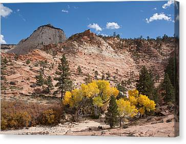 Canvas Print featuring the photograph Fall Season At Zion National Park by John M Bailey