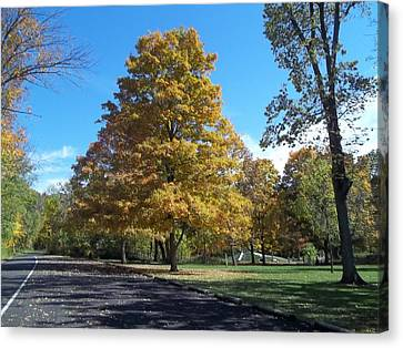 Canvas Print featuring the photograph Fall Season by Eric Switzer