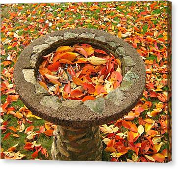 Canvas Print featuring the photograph Fall Splendor by Bruce Carpenter