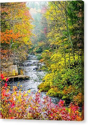 Fall Stream In New Hampshire Canvas Print