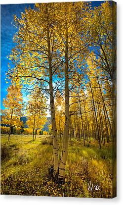 Fall Sunrise Canvas Print by Rick Machle
