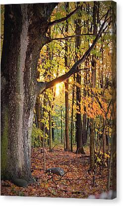 Fall Sunset Canvas Print by Jennifer  King