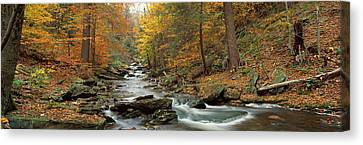 Fall Trees Kitchen Creek Pa Canvas Print by Panoramic Images
