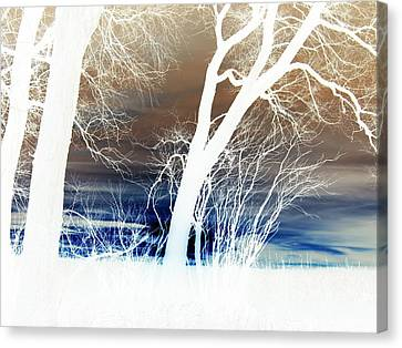 Canvas Print featuring the photograph Fall Trees by Larry Campbell