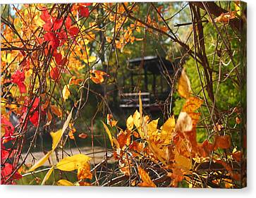 Canvas Print featuring the photograph Fall View by Alicia Knust