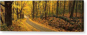 Fall Woods Monadnock Nh Usa Canvas Print by Panoramic Images