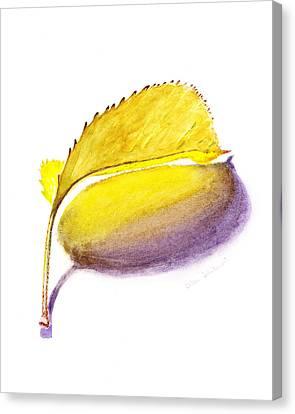 Fallen Leaf Yellow Shadows Canvas Print by Irina Sztukowski