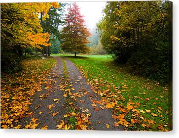 Fallen Leaves On A Road, Washington Canvas Print by Panoramic Images