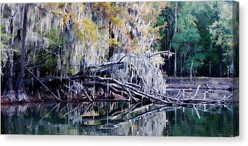 Canvas Print featuring the photograph Fallen Reflection by Lana Trussell