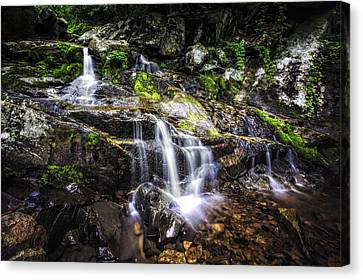 Canvas Print featuring the photograph Falling Cascades  by Joshua Minso