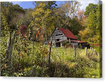 Falling Into Autumn Canvas Print by Debra and Dave Vanderlaan