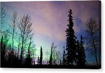 Falling Star And Aurora Canvas Print by Ron Day